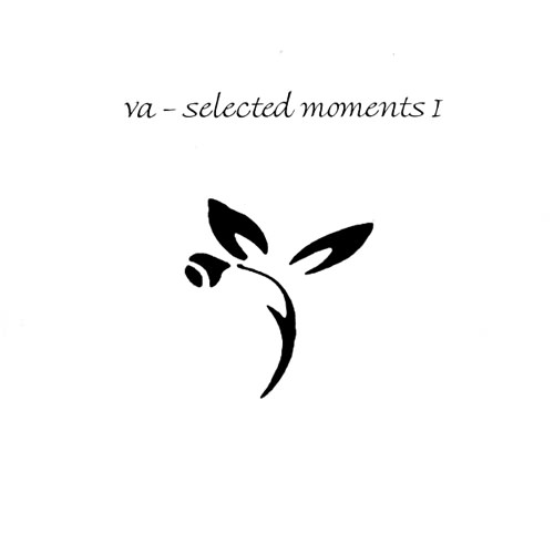 Various Artists - Selected Moments I Shoreless Recordings